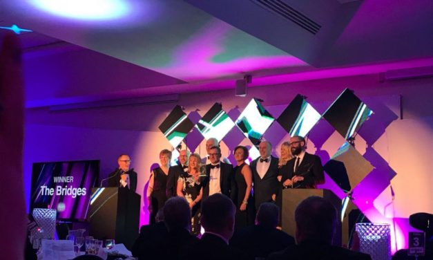 Bridges scoops employer of the year award