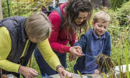 Downy Duckling Days return to Washington Wetland Centre
