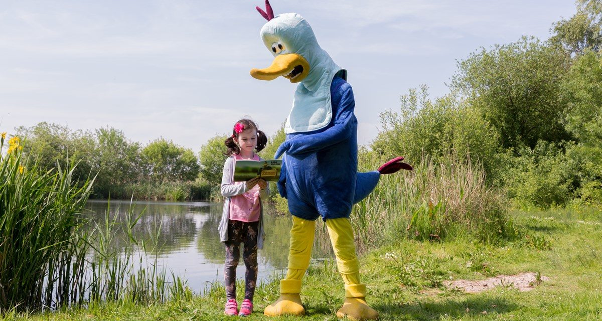 Join Washington Wetland Centre for a summer of wild adventure!