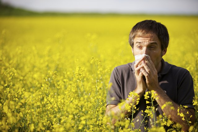 Top tips on handling Hayfever