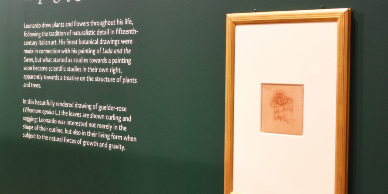 Half-term at Sunderland Museum