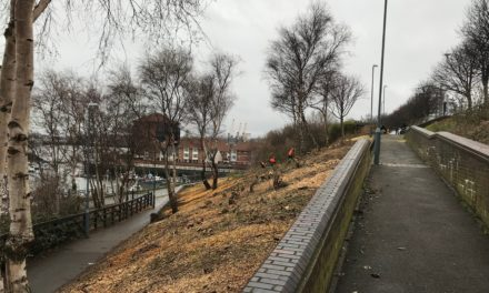 Riverside spruce up creates path with a view