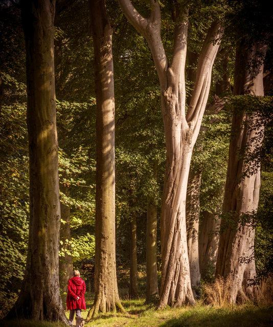 Greening up Doxford Park