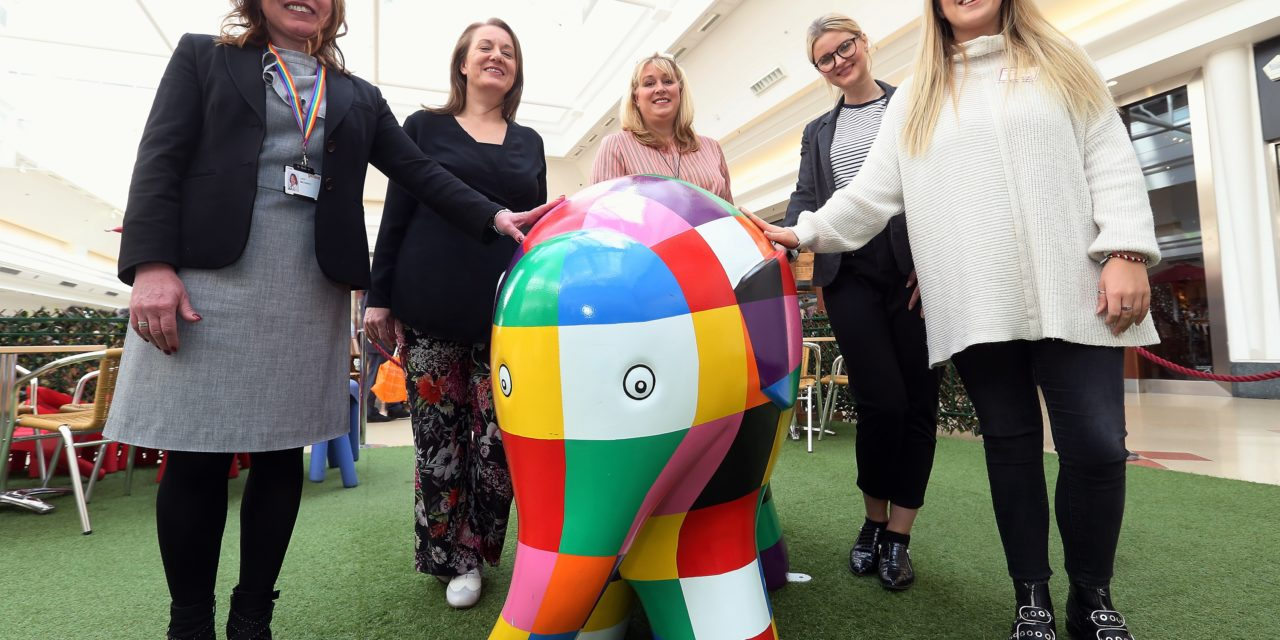 Sunderland businesses encouraged to get on the Elephant Trail
