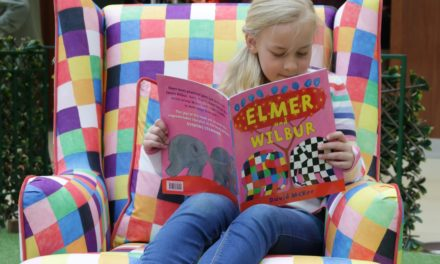 Sunderland Kids Get Snug With Elmer This Summer