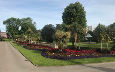 Plants and flowers adding colour to Sunderland City Centre