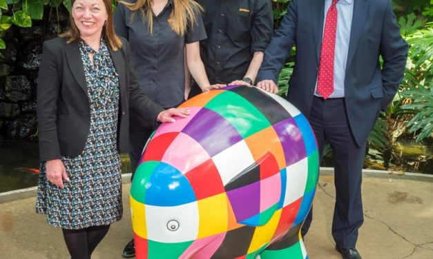 Gentoo brings Elmer to the Sunderland Museum and Winter Gardens