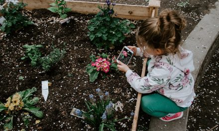GREEN FINGERS: GARDENING WITH THE KIDS