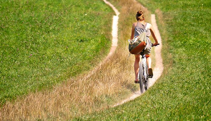Cycle Route Sunderland: Wheeling across Wearside