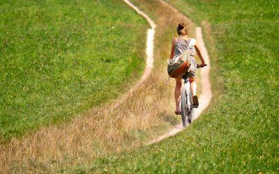 Cycle Routes Sunderland: Wheeling Across Wearside