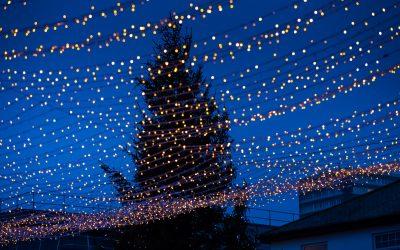 Celebrating a Virtual Christmas in Sunderland…