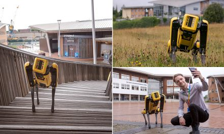Meet University of Sunderland's 'Ground-breaking' Robot Dog – Bernard!